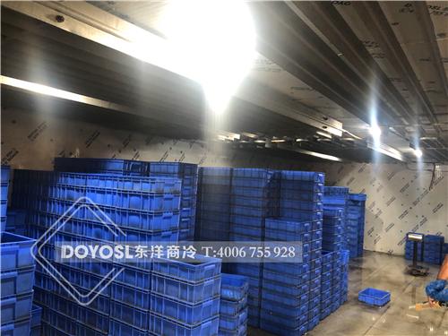 广东省佛山市顺德区北滘生态农业农产品保鲜冷库案例