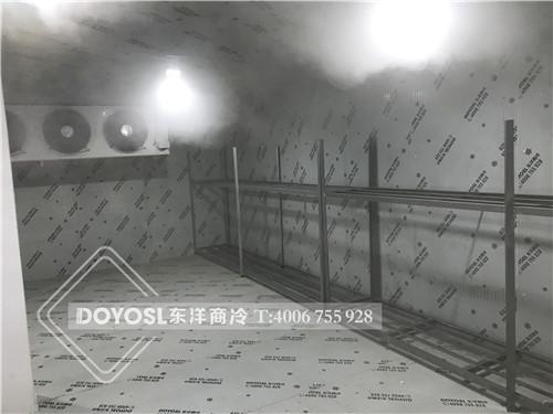 湛江市麻章区中型保鲜库-中型冷冻库案例